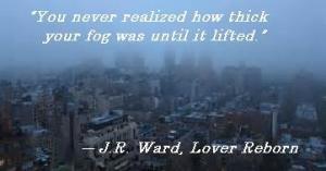 BDB 10 LReborn fog