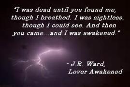 BDB 3 LAwake awake