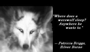 quote MT Silver born sleep