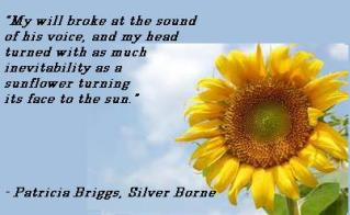 quote MT Silver born sunflower